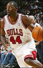 Adrian Griffin Bulls