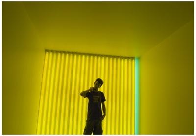 Dan Flavin Yellowizer